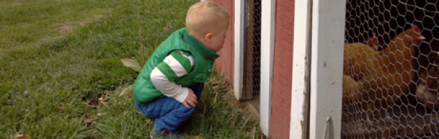 well dressed Treyton has Down syndrome and checks on the chickens